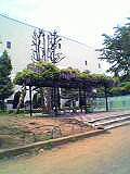 裁判所横の公園