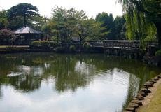日常の風景